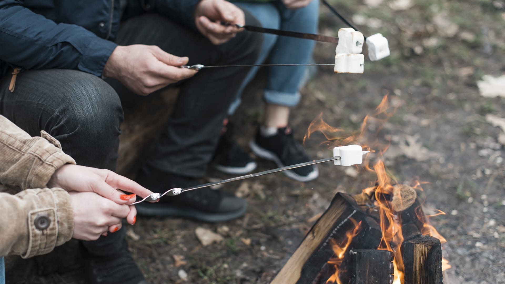 toasting marshmallows over the fire
